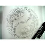 yin yang sketch1