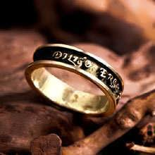 Diligo Ergo Sum Ring Gold (narrow)