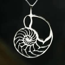Meeresschnecke Silber