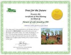 12000 tree donation Certificate