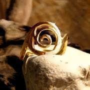 Healing Rafa Ring Gold 549