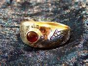 Destiny ring gold with Garnet 174