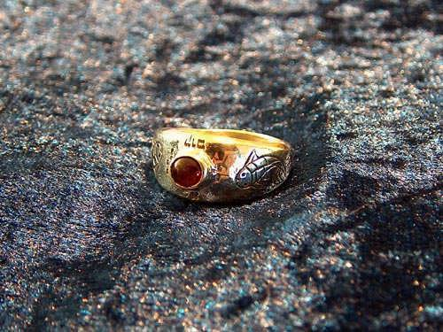 Destiny ring gold with Garnet