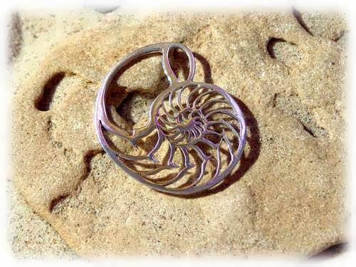 Nautilus Jewelry Pendant Silver